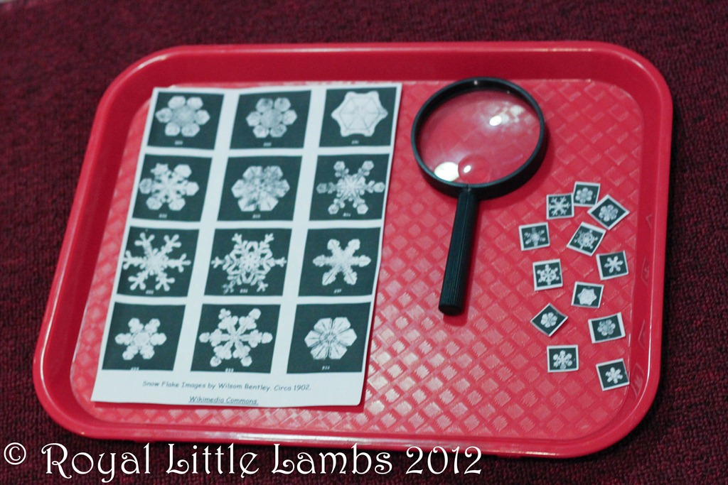 snowflake magnifying activity