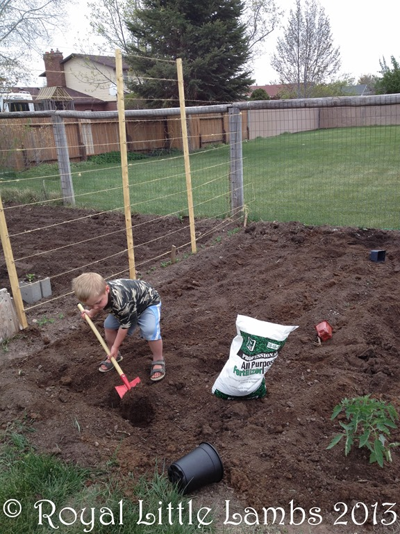 digging in the garden