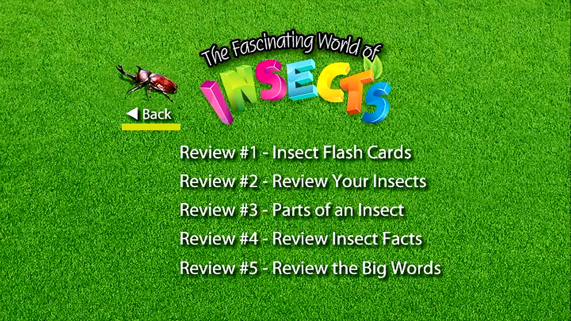 insects review