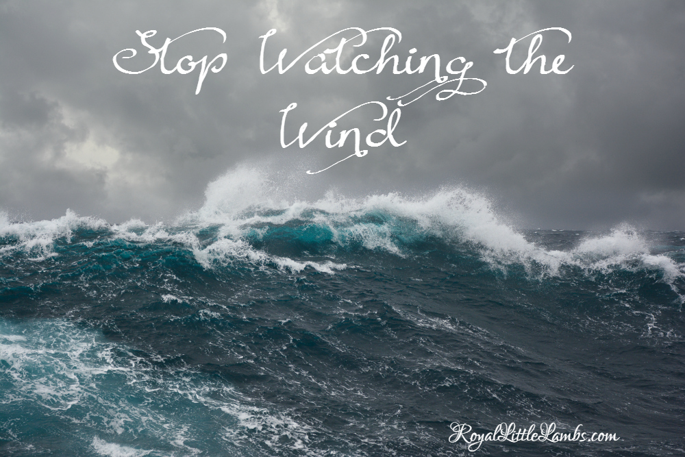 Stop Watching the Wind