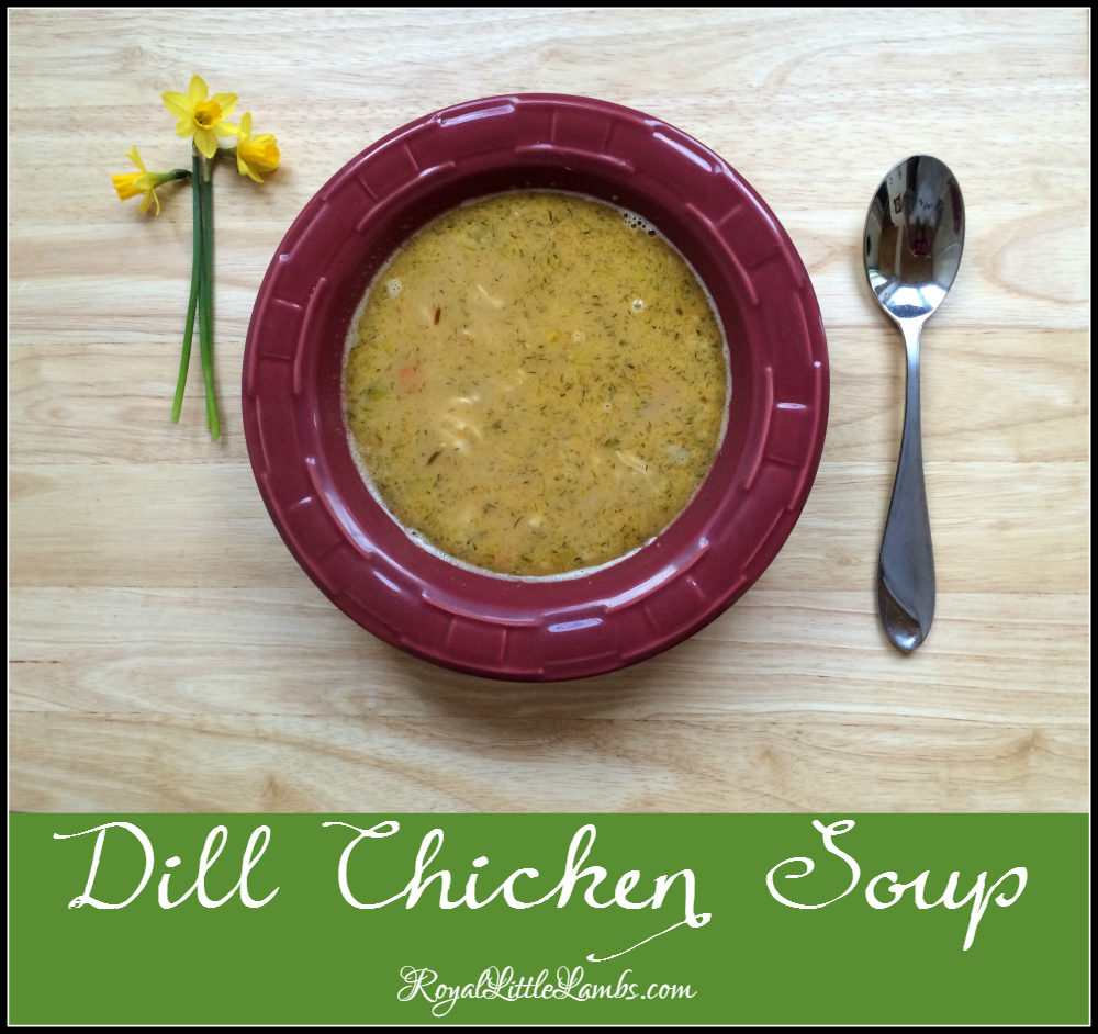 Dill Chicken Orzo Soup