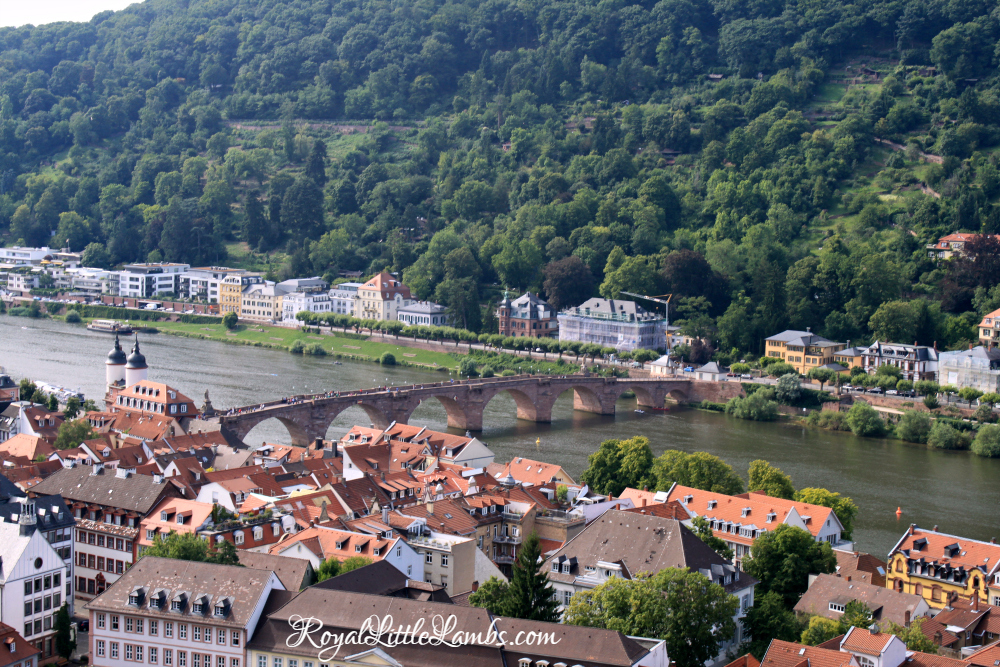 Old Bridge over the Neckar River