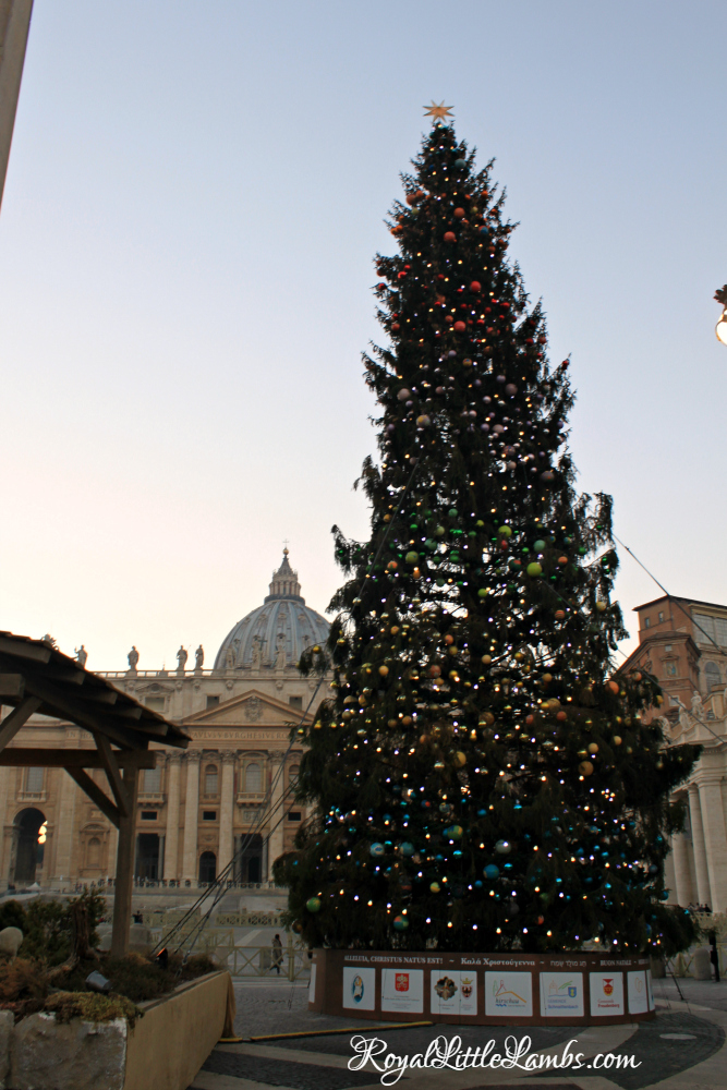 St. Peter's Square Christmas Tree