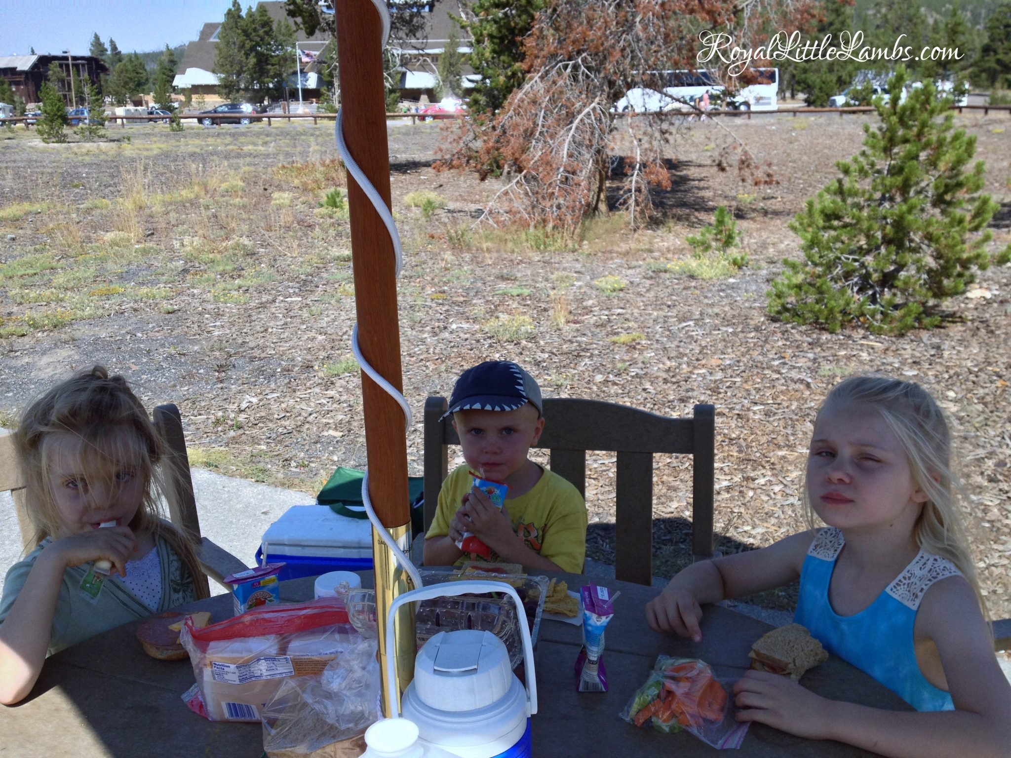 Picnic at Old Faithful
