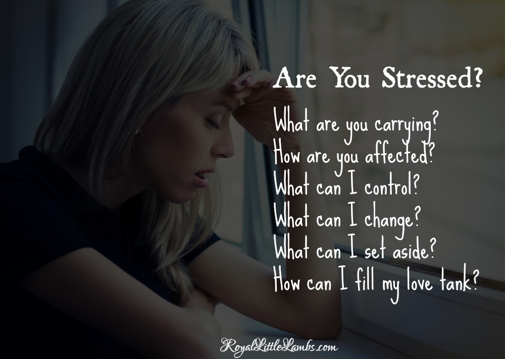 Are You Stressed