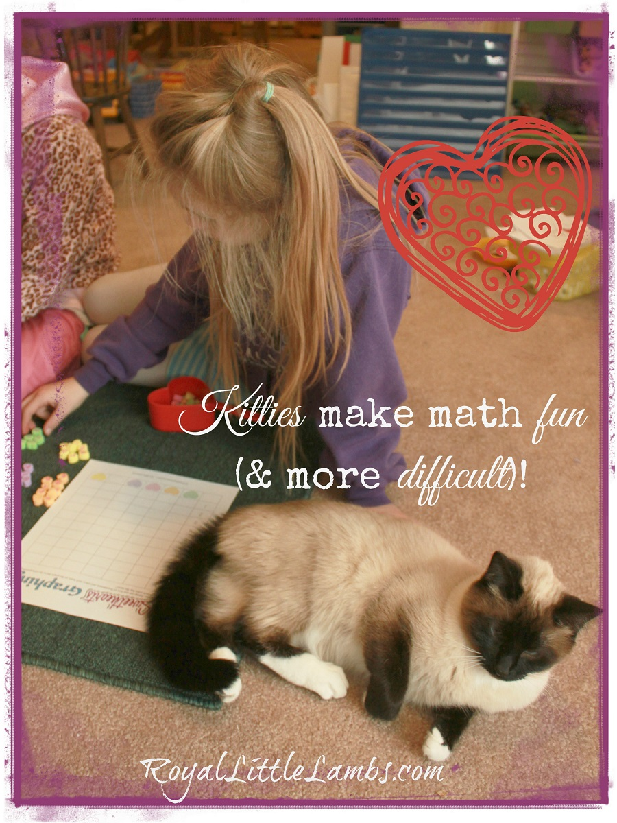 Kittiesmakemathfun.jpg