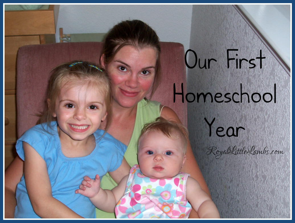 Our First Homeschool Year