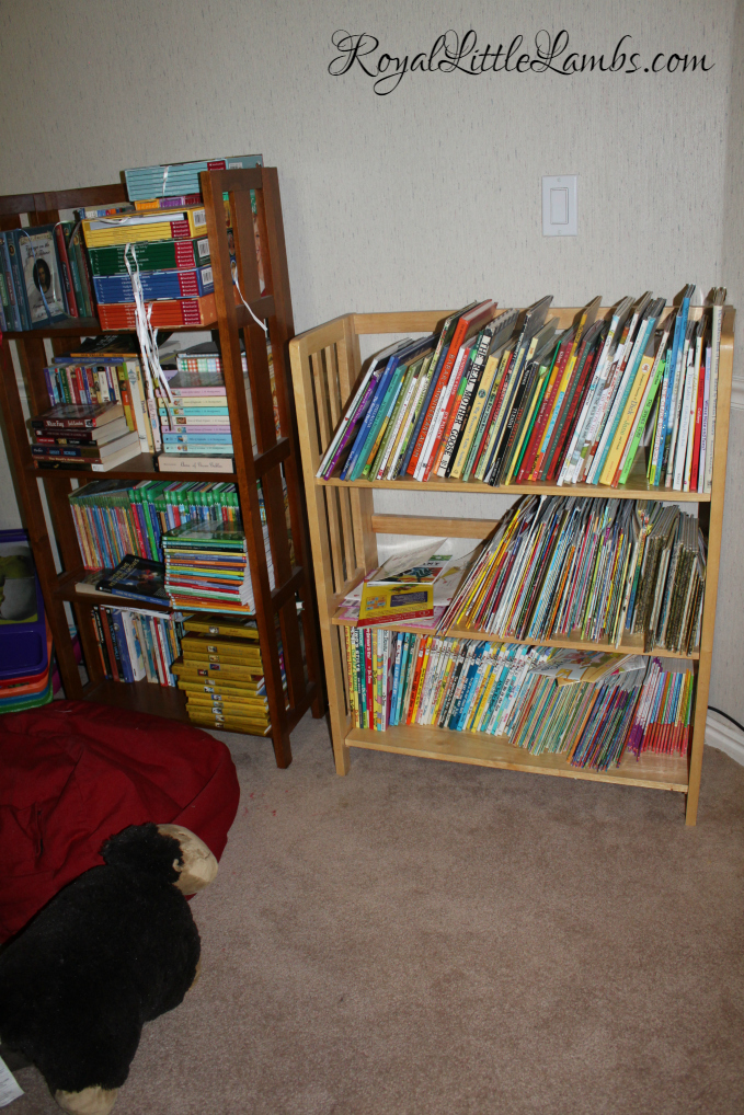 Reading Bookshelves