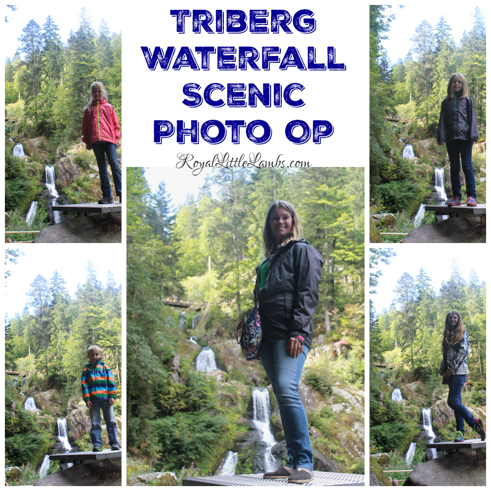 Triberg Waterfall Scenic Photo Op