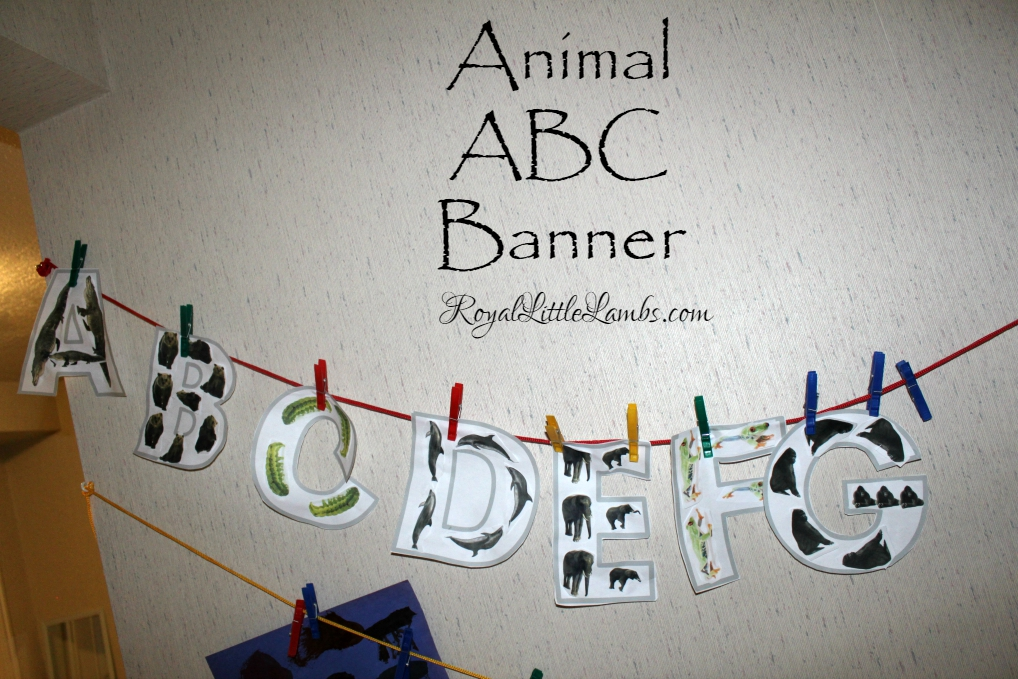 Animal ABC Banner