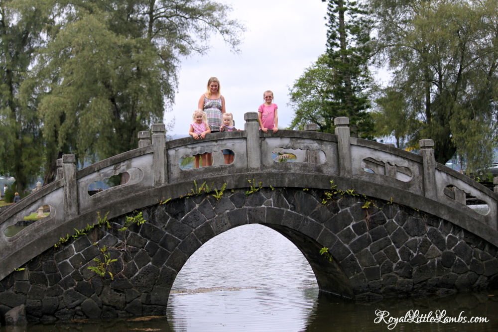 bridge-in-lili%ca%bbuokalani-park-and-gardens