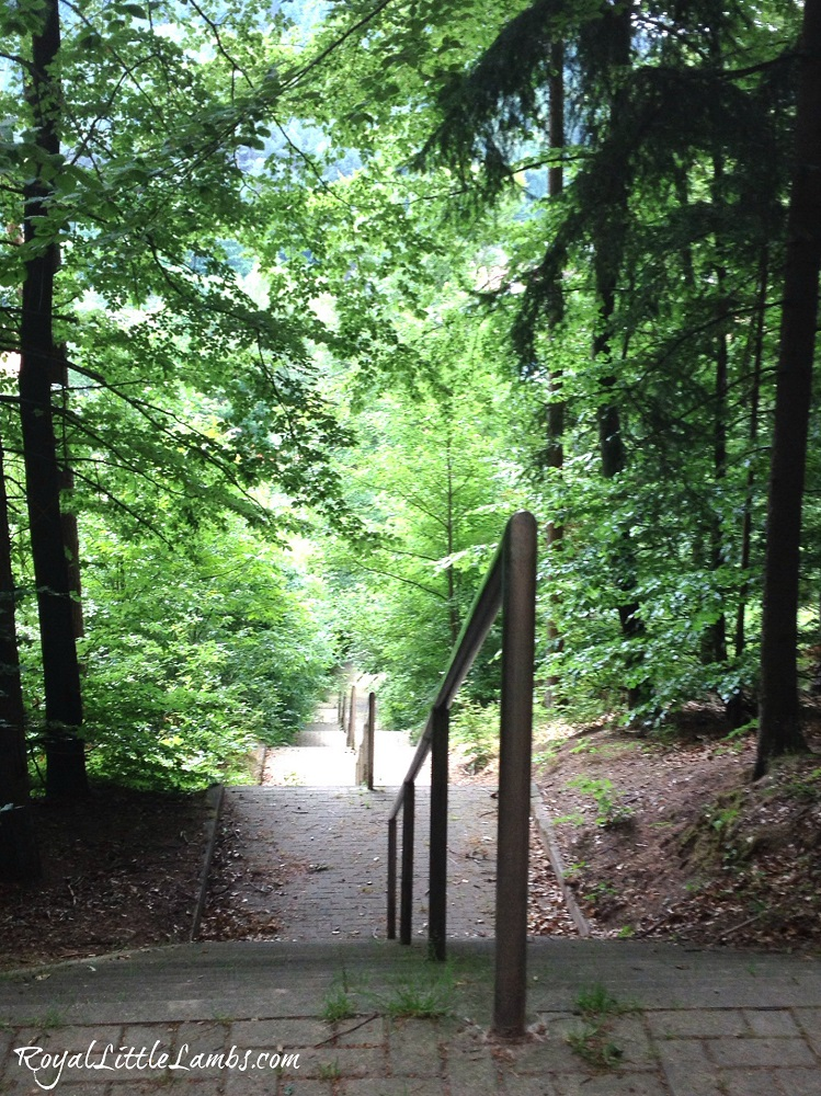 Cobbled Walkway