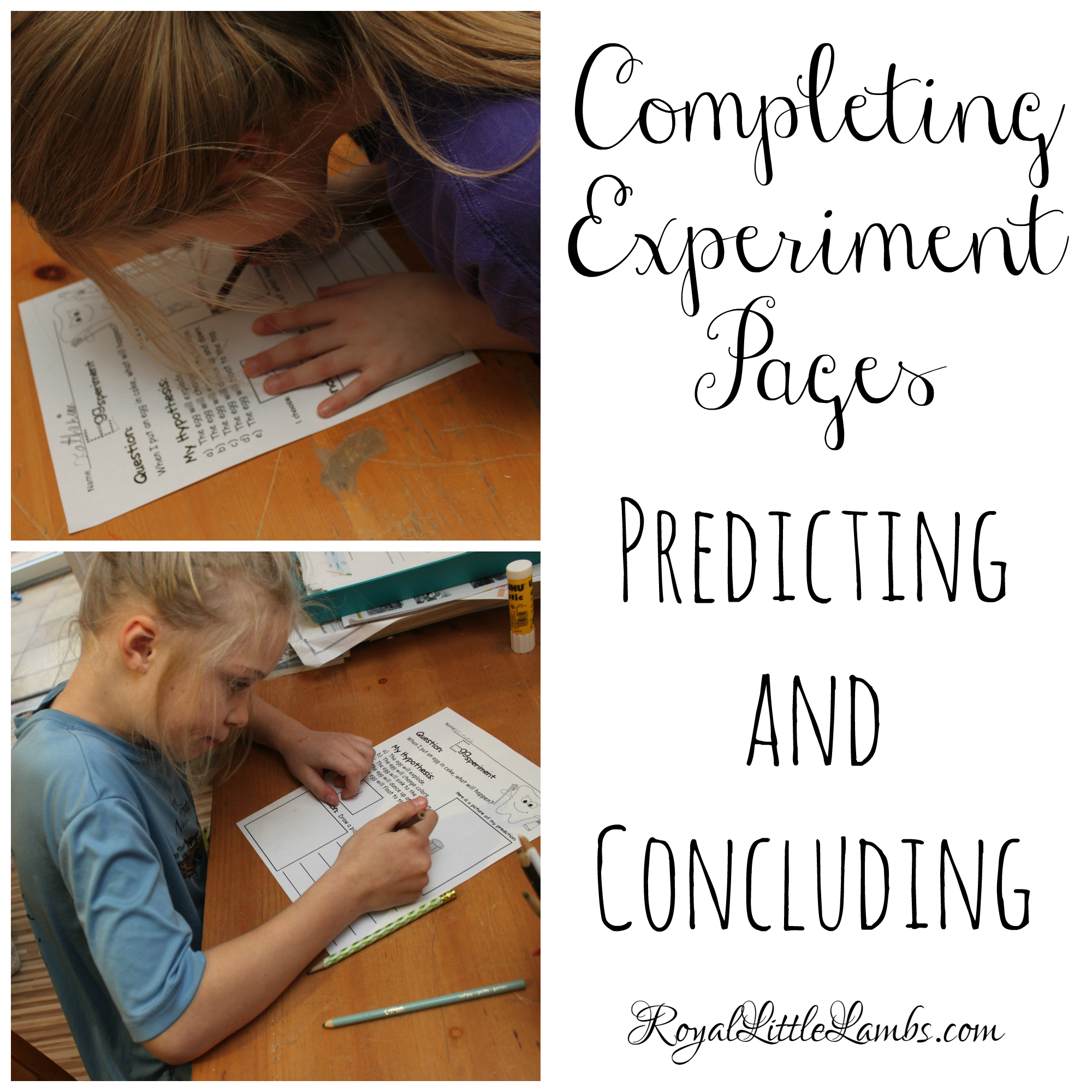 Completing Experiment Pages