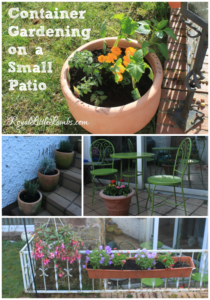 Container Gardening on a Small Patio - Here's how we make the best use of gardening space in our small yard and patio.