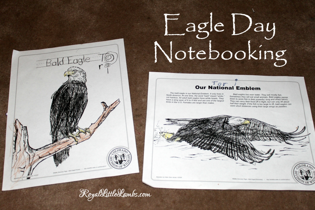 Eagle Day Notebooking