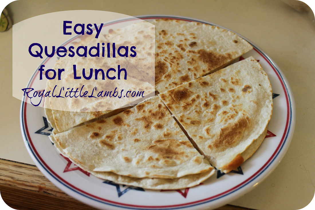 Easy Quesadillas for Lunch