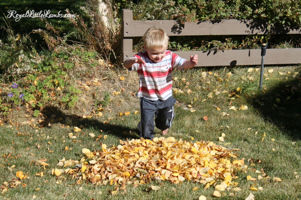 Jumping in a Leaf Pile