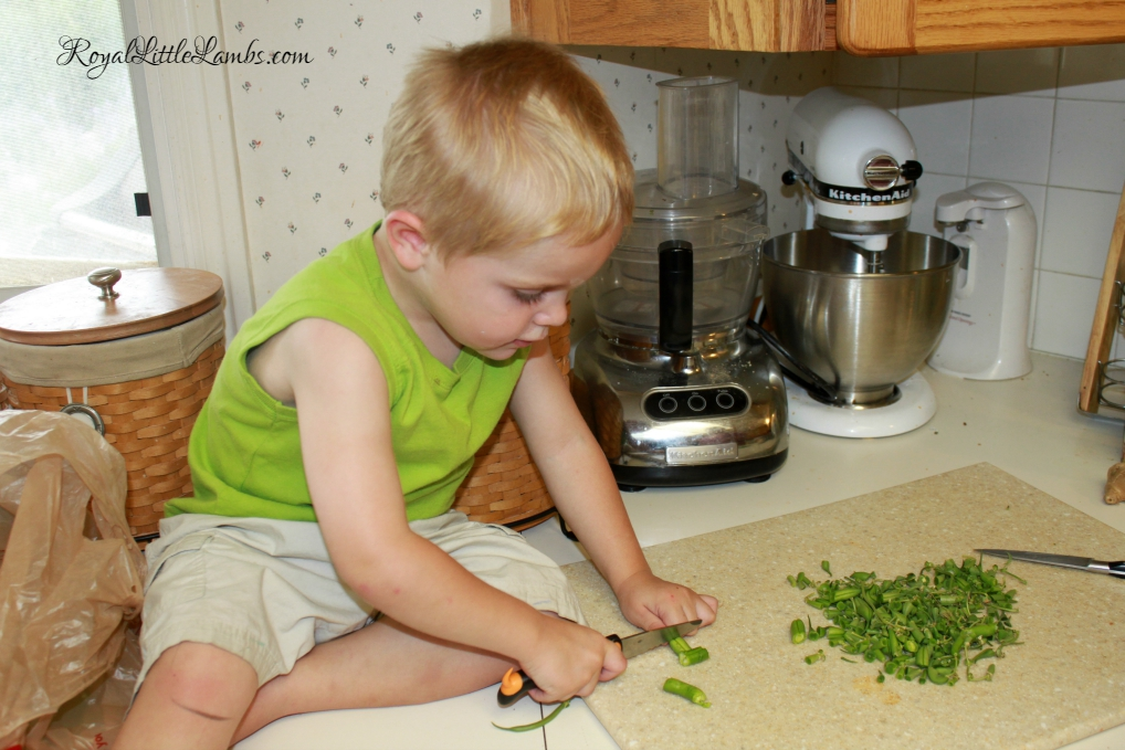 Chopping Green Beans