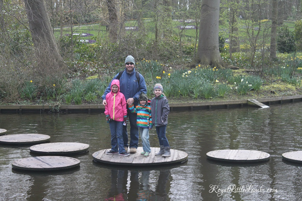 Stepping Stones in the Pond