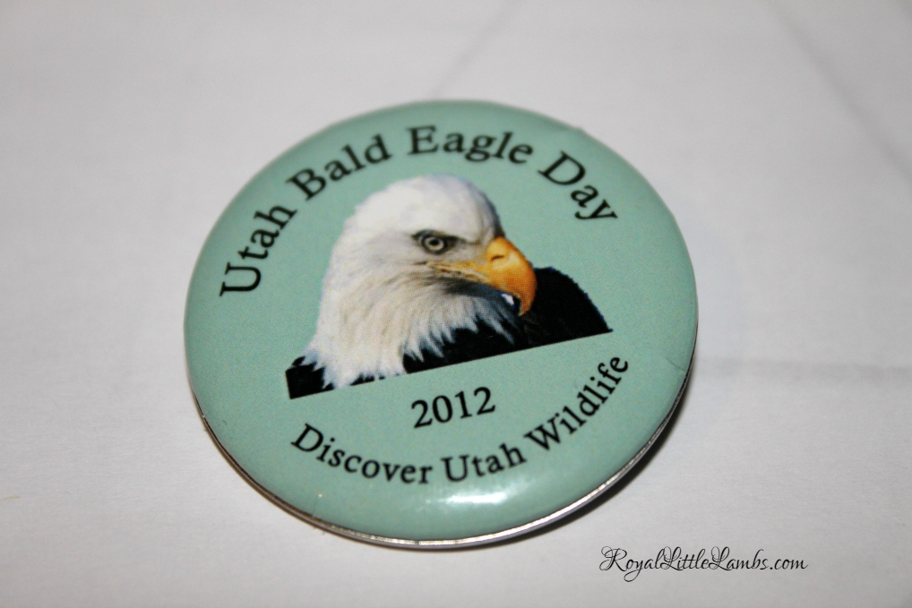Utah Bald Eagle Day Button