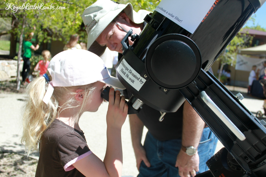 Viewing Sunspots