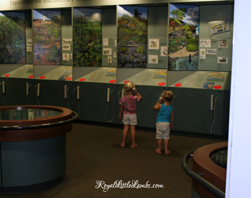 volcanoes-national-park-museum